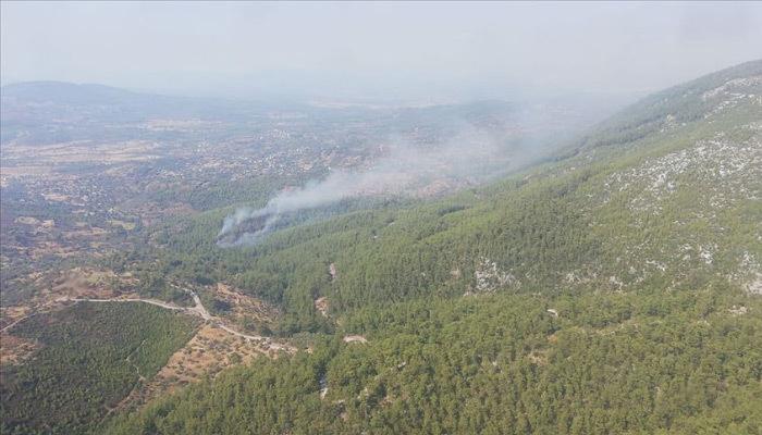 Muğla'da orman yangını çıktı