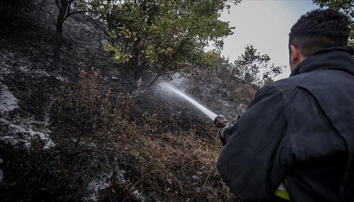 Orman yangınına 'gönüllü' çözümü