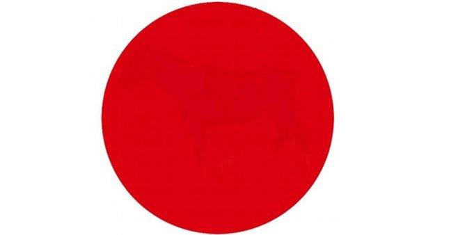 Sosyal medya bunu konuşuyor: Kırmızı noktada ne var?