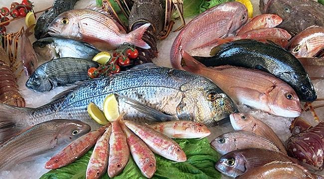 Su ürünleri ve hayvansal mamuller sektöründen 604 milyon dolarlık ihracat