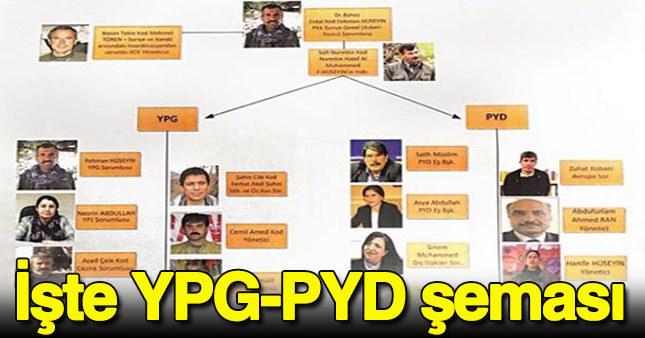 Terör örgütü PYD - YPG'nin yönetim şeması ortaya çıktı.