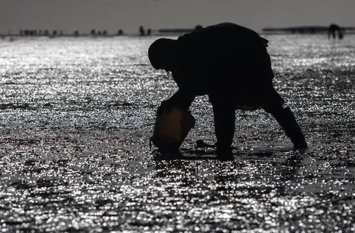 Türkmenistan'daki balıkçılık ve su ürünleri yetiştiriciliği endüstrisine odaklanıyor