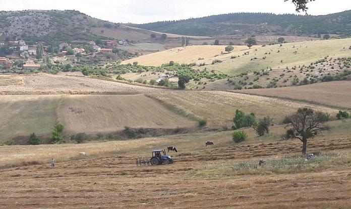 Ulusal Tarım Çalıştayı sonuç bildirgesi yayınlandı