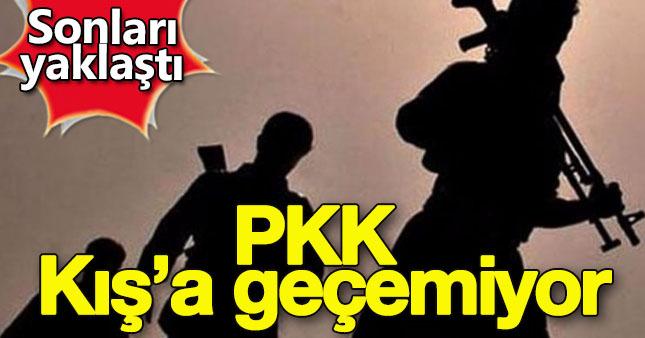 Yeni operasyonlardan dolayı PKK kış'a geçemiyor