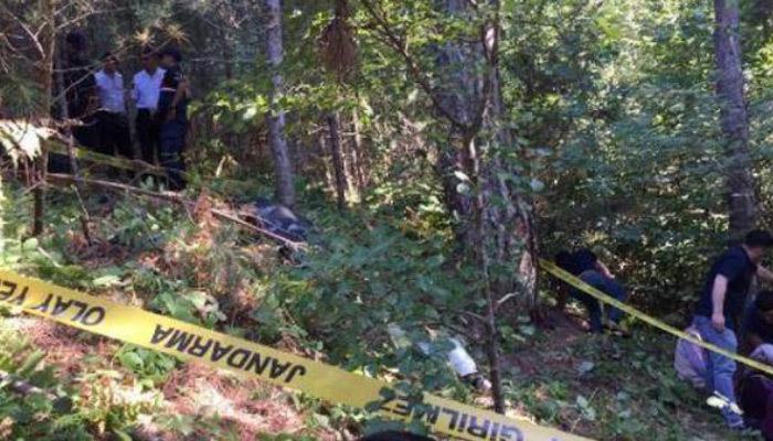 Zonguldak'ta ayı saldırısı
