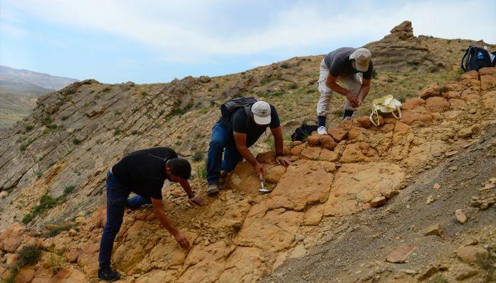 Iğdır'da bulunan bitki ve midye fosilleriyle ilgili bilimsel çalışma başlatıldı