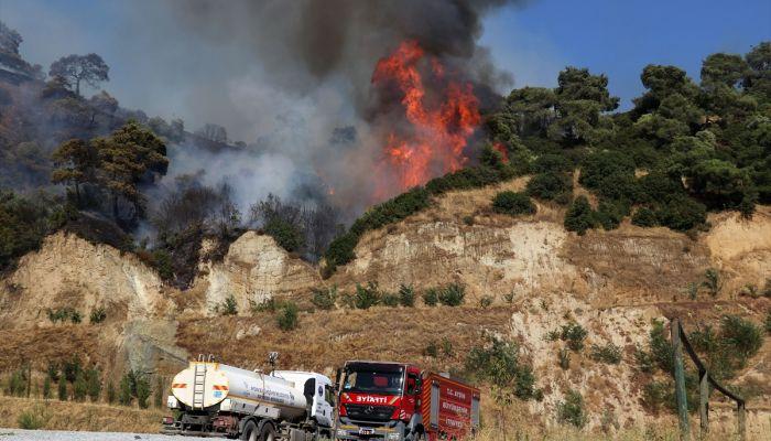 Aydın'da zeytin ve incir ağaçlarının bulunduğu alanda yeniden yangın çıktı