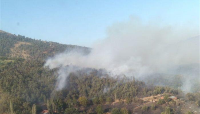 İzmir'in Kiraz ilçesinde çıkan orman yangını söndürüldü