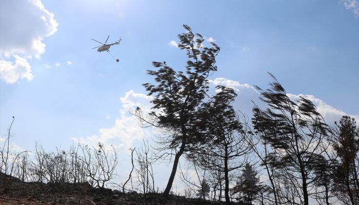 Manisa'da çıkan orman yangını kontrol altına alındı