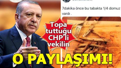 İşte Erdoğan'ın bahsettiği 'Çeyrek domuzu 7 dakikada yiyen' CHP'li vekilin eşinin paylaşımı