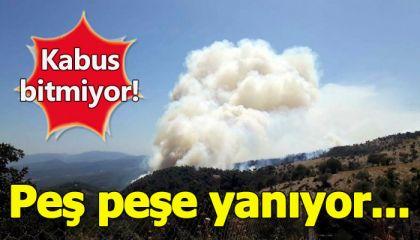 İzmir, Karabağlar'dan sonra iki şehrini daha yangına kurban verdi!