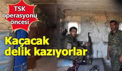 Terör örgütü YPG'den operasyon hazırlığı
