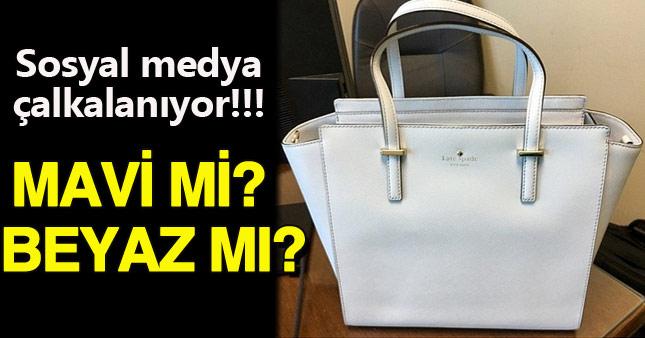 Sosyal medya bu çantanın rengini tartışıyor