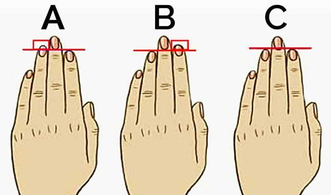 Parmak uzunluğuna göre karakter analizi testi
